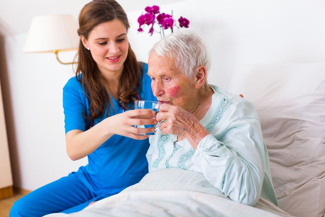 Professional Caregivers for Seniors